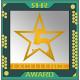 the Excellence Award